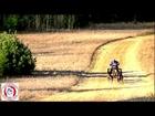 2012 Dirty Dog Dryland Derby 6 Dog Rig Race