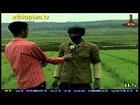 Ethiopian News in Amharic : Wednesday, August 01, 2012