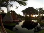 Golf Safari in Bonita Springs Florida - Things to Do in Bonita Springs, Florida