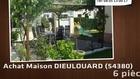 Vente - maison - DIEULOUARD (54380)  - 380m²